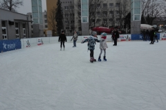 WF na lodowisku